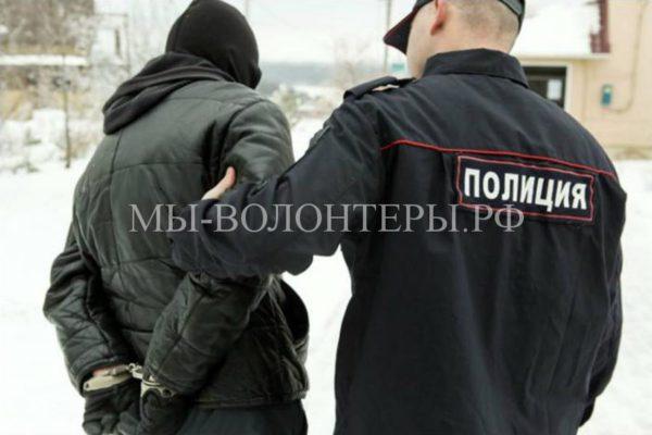 Петербургские депутаты предложили законопроект о привлечении к уголовной ответственности за издевательства над животными с 14 лет