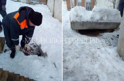 Сотрудники МЧС в Брянске спасают собак, попавших в беду