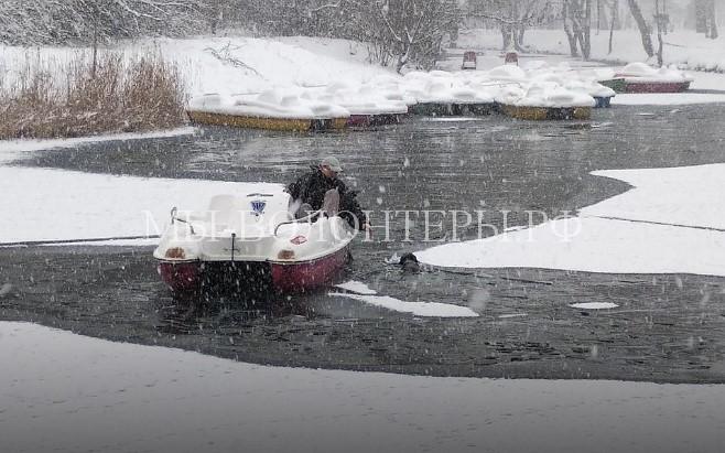 Спасение бездомной собаки, провалившейся под лед