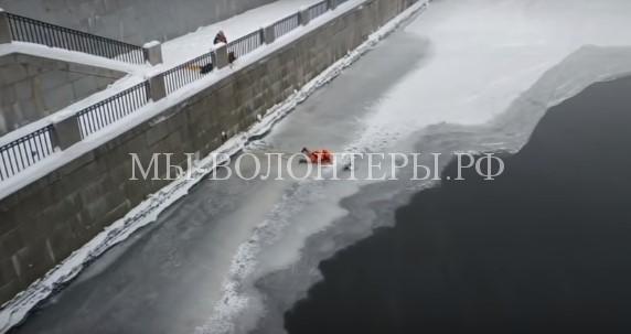 Спасение уточки, вмерзшей крылом в лед