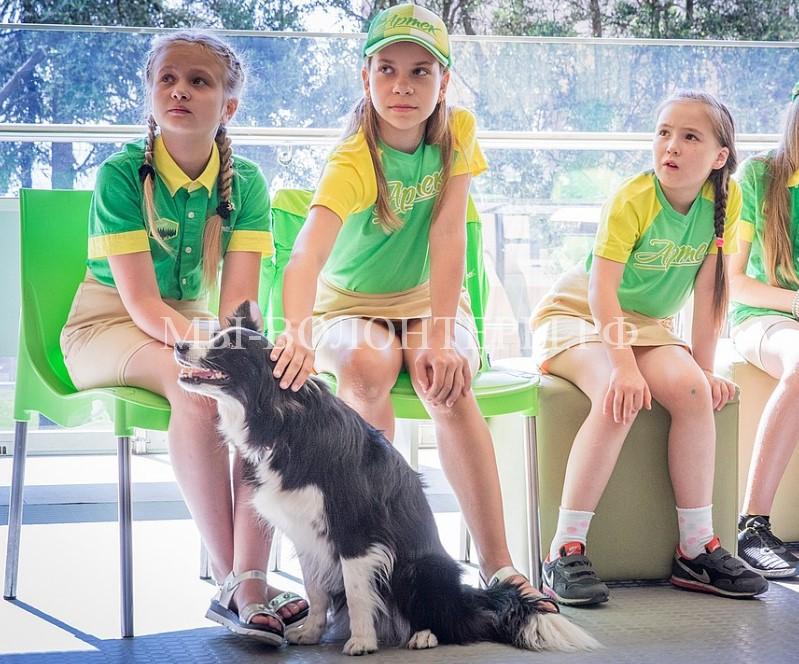 Ася — лучшая собака-терапевт в России