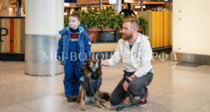Аэропорт Домодедово предложил пассажирам новый способ снять стресс