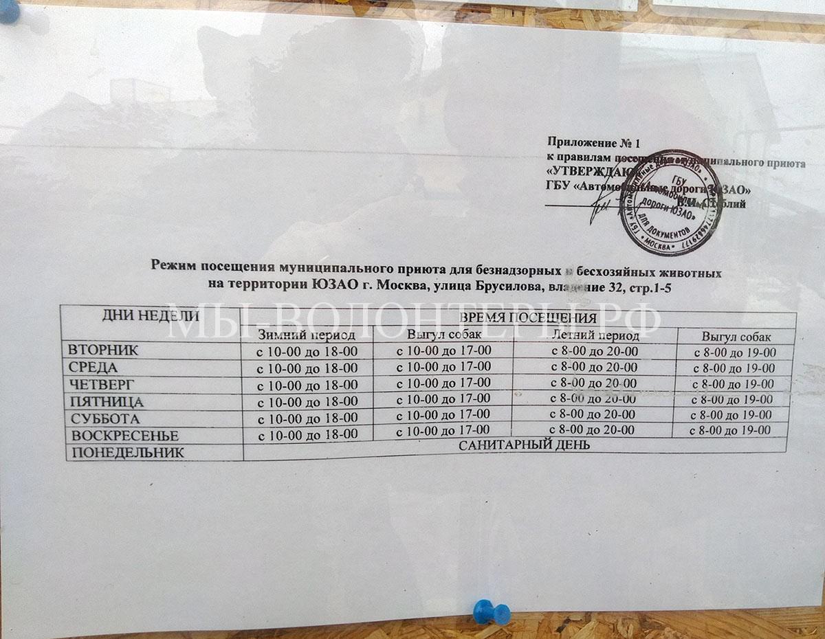 График посещения приюта Щербинка. ЮЗАО, Москва