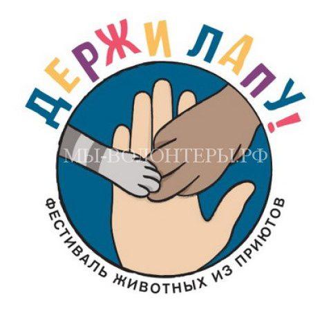 30 и 31 марта пройдет фестиваль «Держи Лапу»