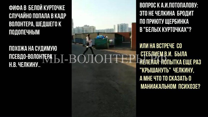 Волонтер собак приюта Щербинка в «белой курточке»… Это не Челкина ли, а, Потопалов А.И.?