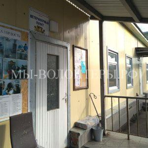 Волонтеров Щербинки в соцсетях активно поддерживают коллеги из приютов Москвы