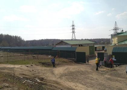 Волонтеры приюта Щербинка отказались общаться с Потопаловым А.И.
