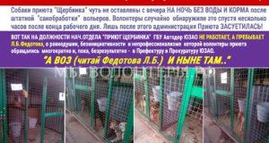 Из-за разгильдяйства руководства Приюта без воды и корма опасно оставлены собаки приюта Щербинка..