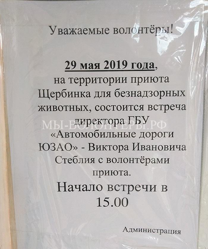 Стеблий В.И. встреча с волонтерами приюта Щербинка, 29.05.2019