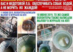 Вниманию В.И.Стеблия: Регламент требует от Вас и  Федотовой Л.Б. обеспечивать собак водой, а не морить их жаждой!