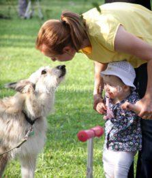 Cемейный фестиваль Family Pets в парке «Садовники»