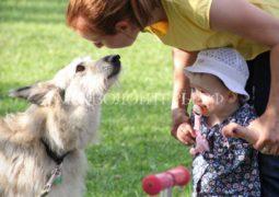 Cемейный фестиваль Family Pets в парке