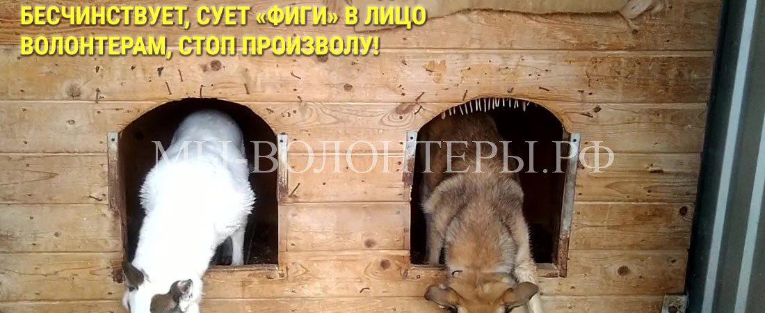 Г-да О.А.Волков (префект ЮЗАО) и В.И.Стеблий! Нач. приюта Щербинка Л.Б.Федотова бесчинствует, сует «фиги» в лицо волонтерам, стоп произволу!