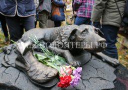Первый в столице памятник бездомным животным установлен в парке