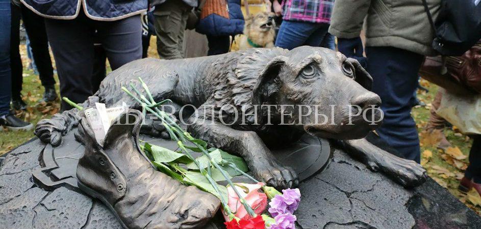 Первый в столице памятник бездомным животным установлен в парке «Музеон»