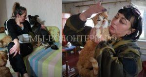 Две екатеринбурженки спасают животных из Луганска