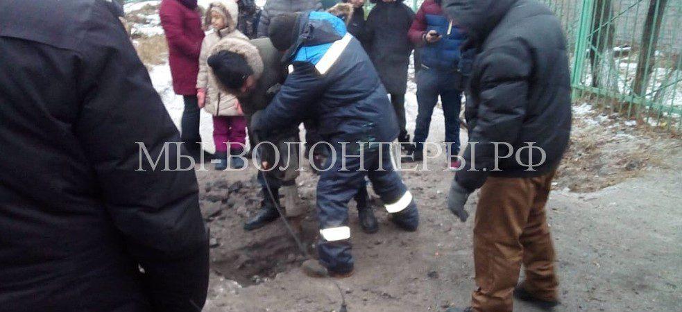 В Омске спасли умирающую сбитую собаку, которая застряла в трубе