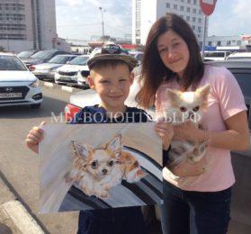 Школьник из Арзамаса рисует портреты собак и кошек в обмен на корм для бездомных животных