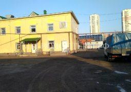 Приют Щербинка: о дегельминтизации и вакцинации (март 2020) и посещении с 22 по 25 февраля с.г.