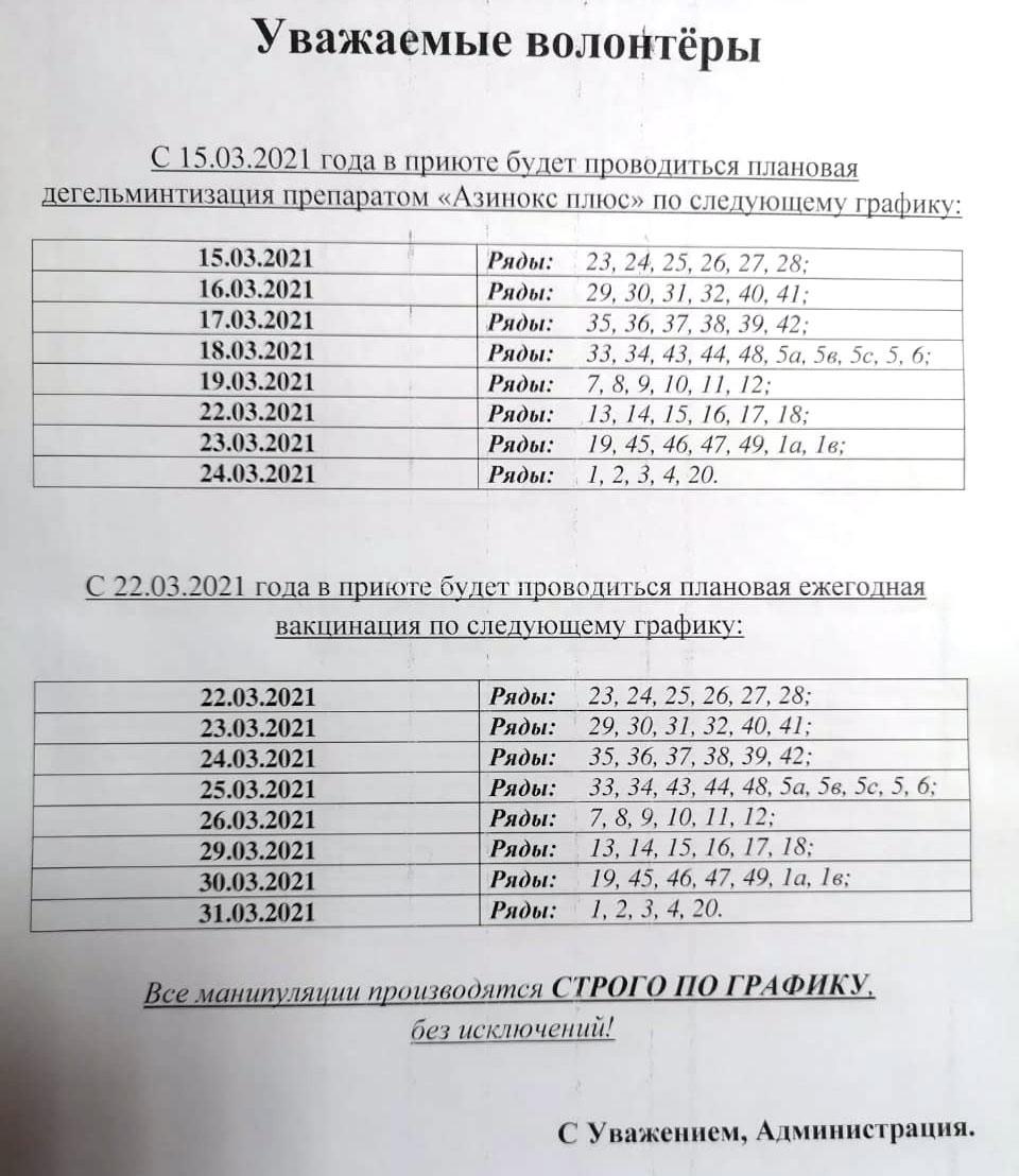 Весенняя-дегельментизация-и-вакцинация-собак-в-мнеиуипальном-приюта-ЮЗАО-Щербинка